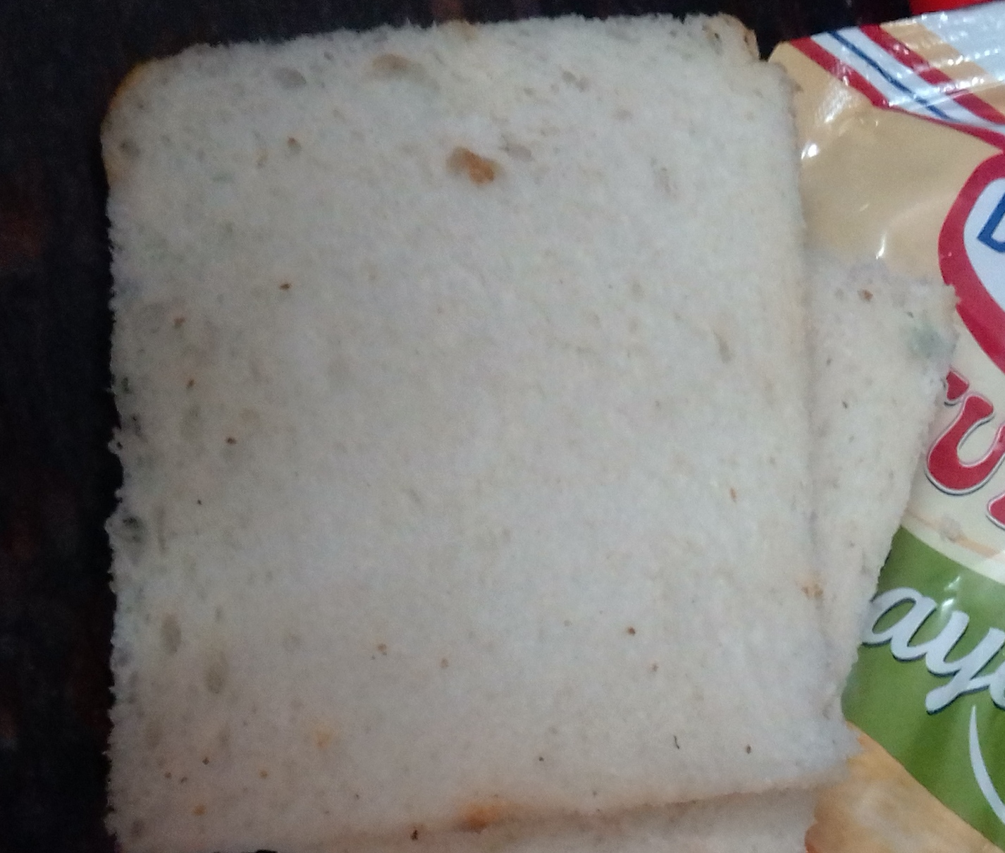 Grilled Mayonnaise Sandwich